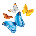 myChildren's icon
