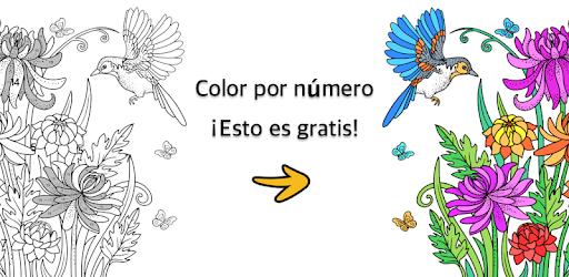 descargar pintar por numeros libro de colorear gratis