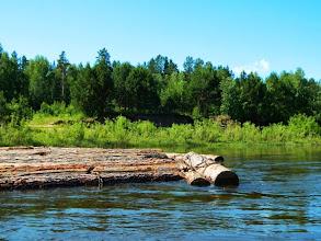 Photo: Плоты немного сплавляют по речке.