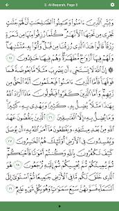 Al Quran Memoriser 8