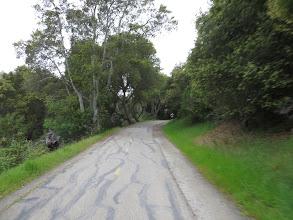 Photo: The Sawyer Camp Trail