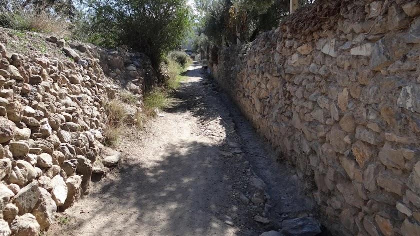 El Camino Real Viejo será un itinerario saludable