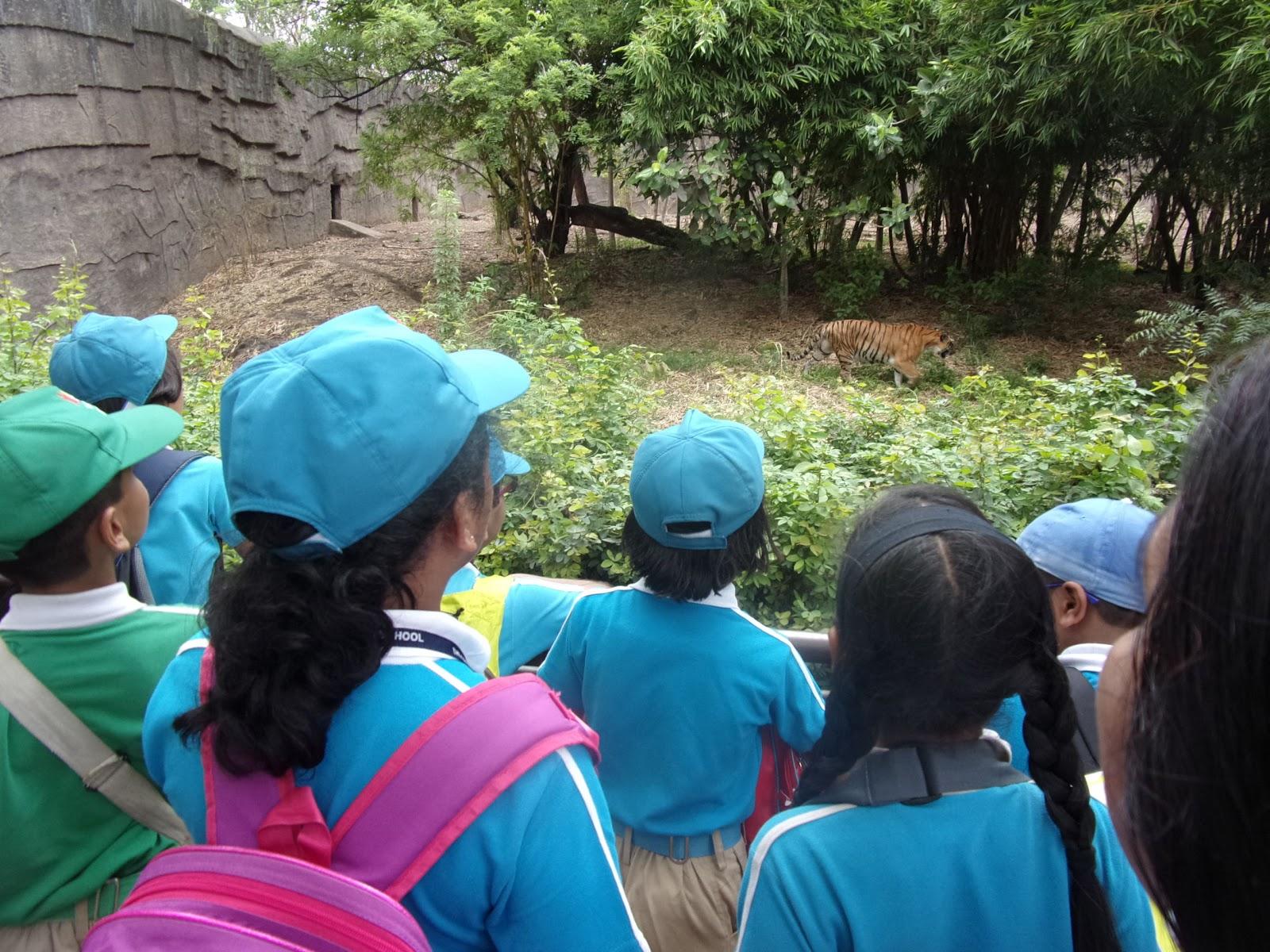 zoological park (2).JPG