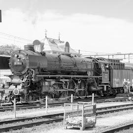 SteamTrain by Fok Vleeshakker - Black & White Landscapes ( stoom trein, stoom, steam train, hoorn, black and white,  )