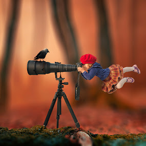 The little hunter by Caras Ionut - Digital Art Things ( calm, reflection, wood, fairy, crow, ocean, storm, island, psd, sky, girl, cold, tree, dark, long exposure, motion, rocks, photoshop, water, tutorials, fruit, lens, manipulation, bird, tower, fog, fly, castle, night, bridge, mist, gravity )
