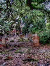 Photo: Old Burying Ground - Photo courtesy Chadwick descendant Lisa Margolis