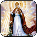 Virgin Mary wallpaper 2020 icon