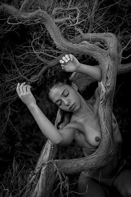 Like a nature di Alessandro Mirai