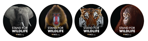 FREE Stand For Wildlife Sticke...