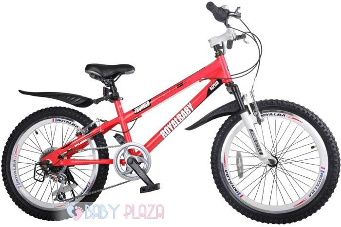 Xe đạp trẻ em RoyalBaby 20B6S 20inch 1