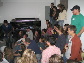 """Photo: Partial shot of the group gathered to see the infamous """"feeding of the lungfish"""" at a Tank Party..."""