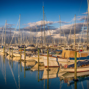 West Haven Marina, Auckland by Graeme Hunter - Landscapes Waterscapes