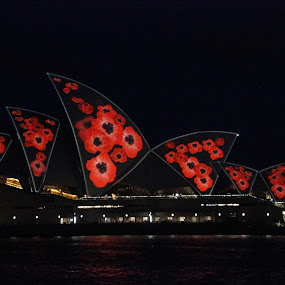 Sydney opera House Remembrance Day   by Gaile Horth - Buildings & Architecture Public & Historical (  )