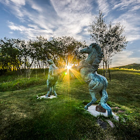 Sunrise Horse Statues  by Chad Weisser - Landscapes Prairies, Meadows & Fields ( high aspen ranch, weisser photography, pwcsunbeams-dq, aspen )