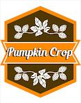 Jack's Abby Pumpkin Crop