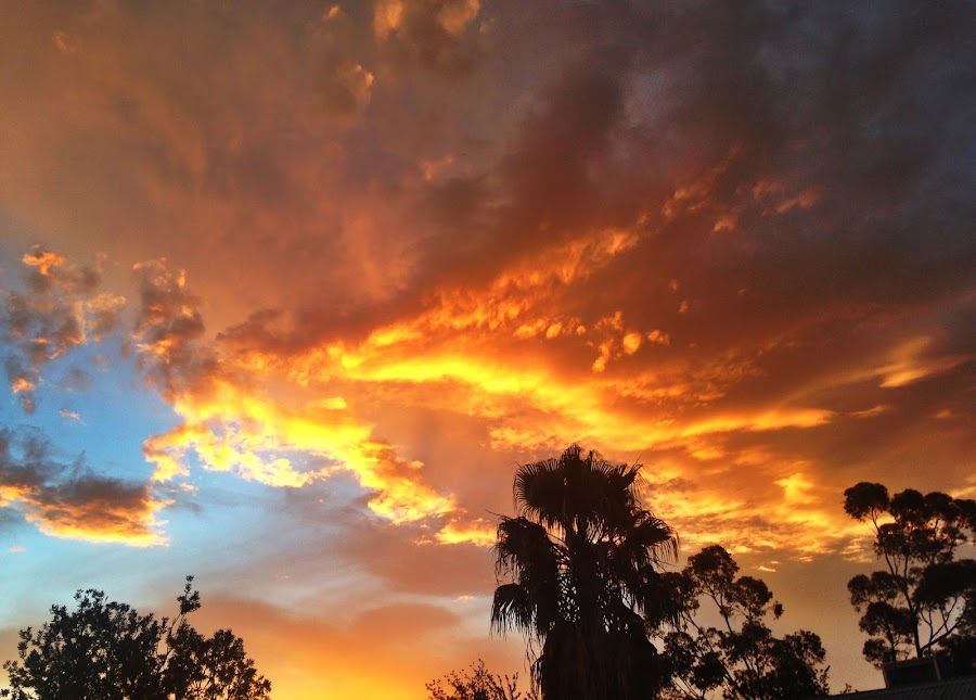 Fire sky sunrise by Victoria Keech - Novices Only Landscapes