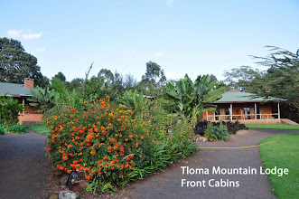 Photo: Another Kibo property, a very nice lodge on the edge of the Ngorongoro Crater