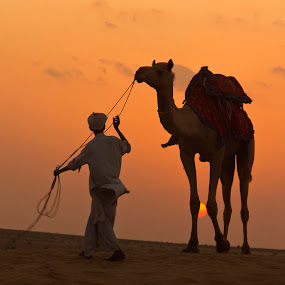 The Camel Herder at Thar... by Avishek Patra - People Street & Candids ( desert, sun set, sun rise, sand dune, rajasthan, dusk, camel, dawn, desert sunset, desert sunrise, camel herder, india, thar desert, , colorful, mood factory, vibrant, happiness, January, moods, emotions, inspiration )