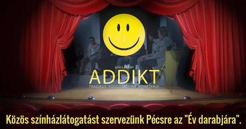Közös színház látogatást szervezünk Pécsre az Év darabjára 2017