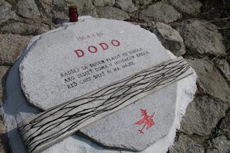 Photo: Pekné motto na dunajskom brehu
