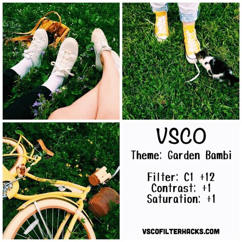 Garden Bambi Instagram Feed Using VSCO Filter C1