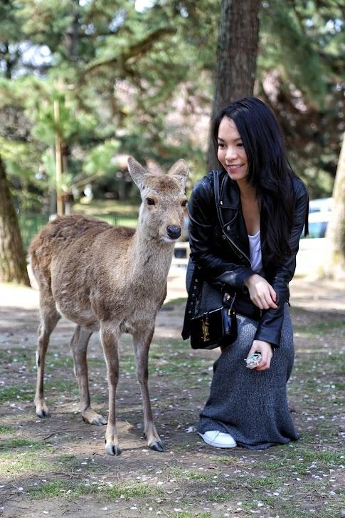Nara, Jelonki