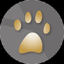 OKM Gepard GPR 3D - NT 2020 Download on Windows