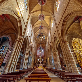 catedral pamplona by -. Phooneenix .- - Buildings & Architecture Places of Worship ( pamplona, catedral,  )