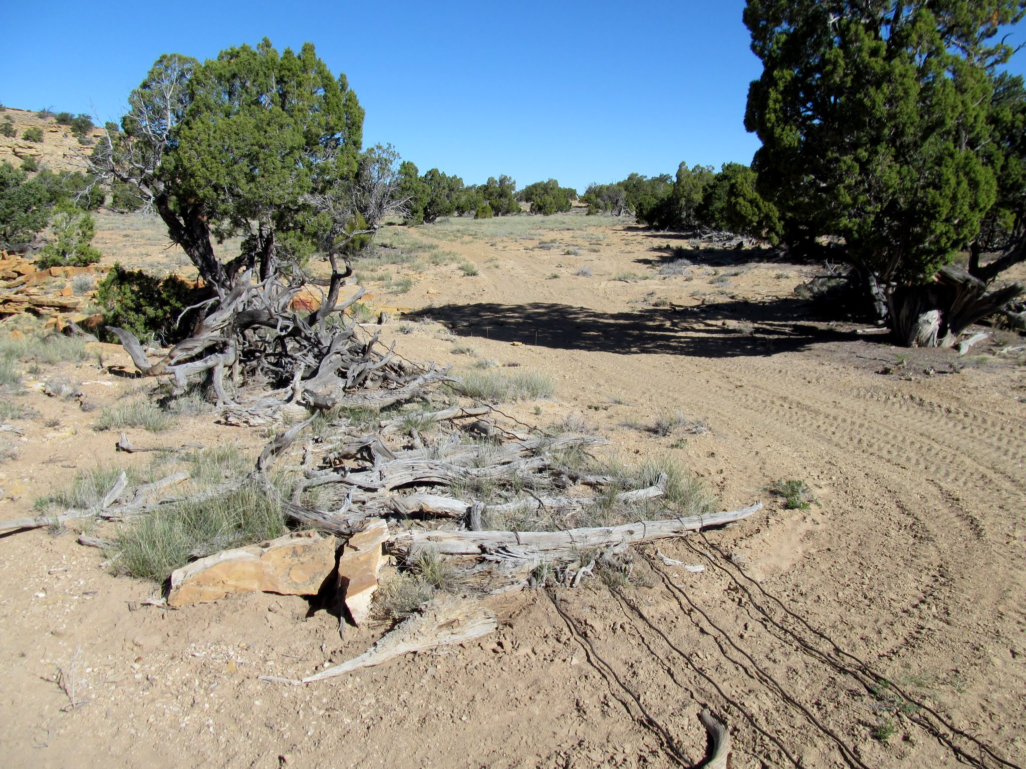 Photo: Wild horse trap/corral at Home Base