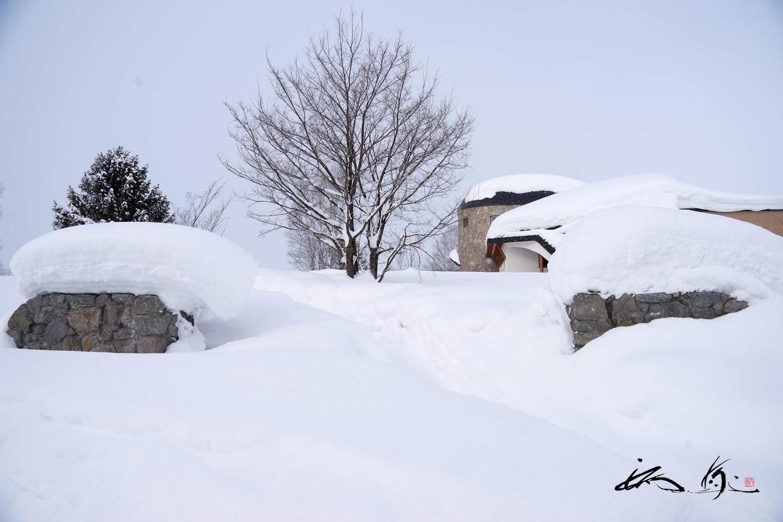 雪に覆われた「フェルム・ラテール美瑛」