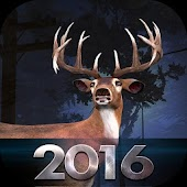 Bow Hunter 2016 V1.0/New!