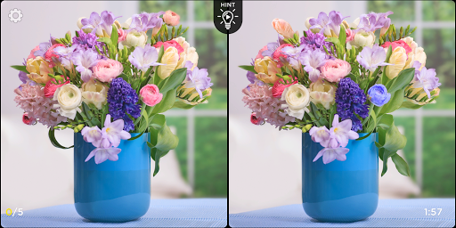 Spot the Difference - Insta Vogue 1.2.1 screenshots 11