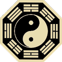 Acupuncture TCM Patterns icon