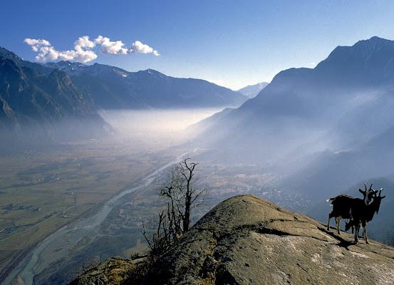 Una valle nella nebbia di benny48