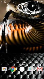 Hadem Živé Tapety - náhled