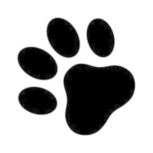 Dig Dog! Icon