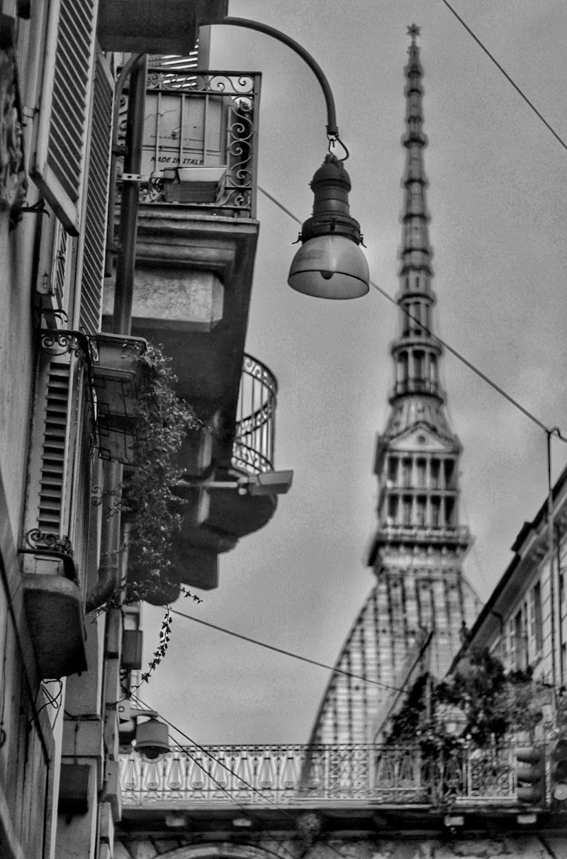 Torino  di Sammy-