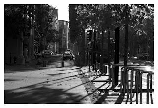 Photo: dans l'avenue