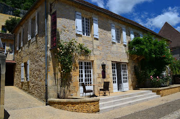 locaux professionels à Les Eyzies-de-Tayac-Sireuil (24)