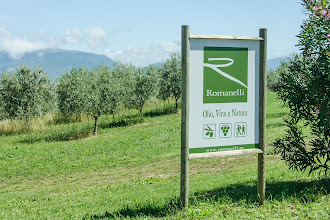 Photo: Our first winery, Romanelli