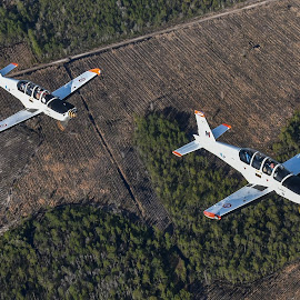 Epsilons Over Georgia by Ron Malec - Transportation Airplanes
