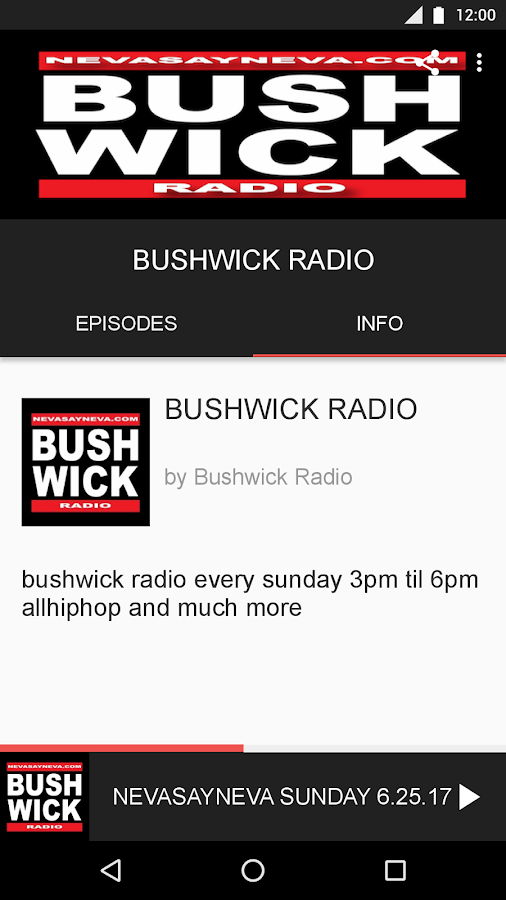 BUSHWICK RADIO- screenshot