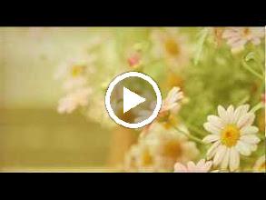 Video: A. Vivaldi  Tremori al braccio [cantata] for soprano   b.c. (RV 799) - Part II -