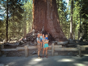 Photo: Family and a Big Tree