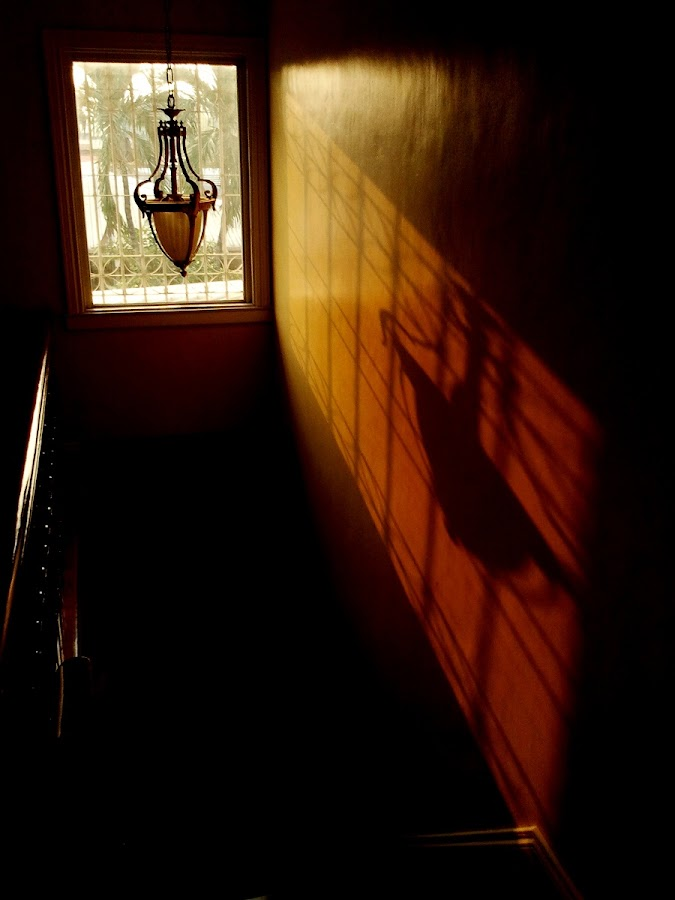LIGHT AND SOUL by Irene Dy - Instagram & Mobile Android ( soul searching, home, window, afternoon sun, fine art, sunlight, light )