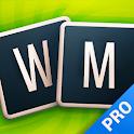 Word Master - Pro icon