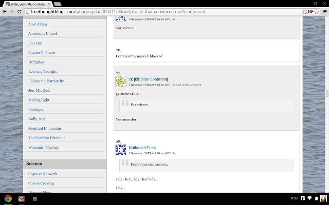 Blog Comment Killfile