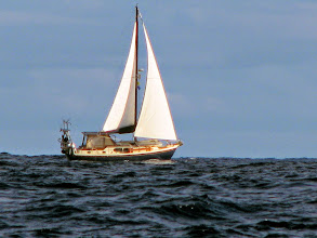 Photo: We don't have many photos of CJ under sail.  Thanks Brian!