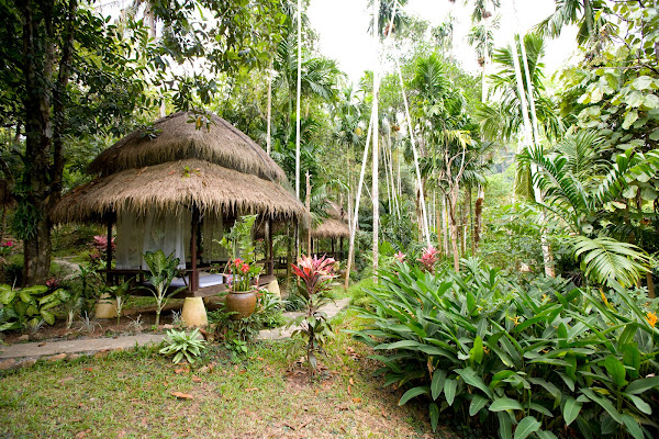 Full-day spa treatment in the lush tropical landscape