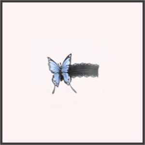 蝶のガーター-夜